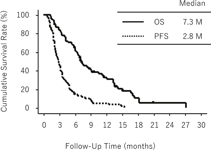 Overall survival (OS) and progression-free survival (PFS) in all eligible patients (n = 68).