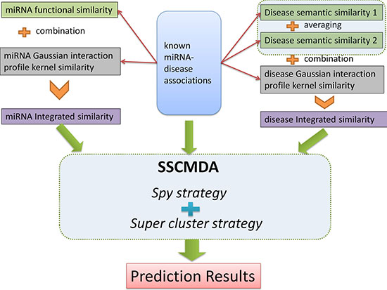 The whole process flowchart of the SSCMDA method.