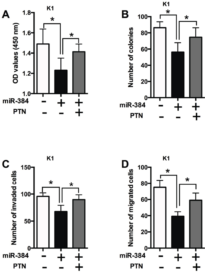 The effects of miR-384 in PTC cells is dependent on PTN.