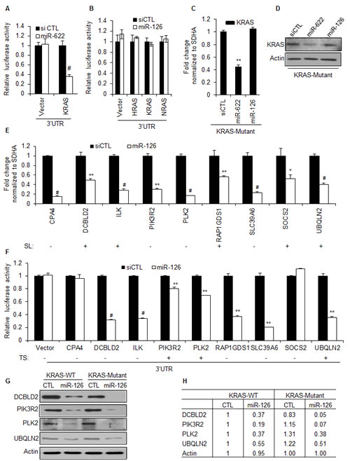 MiR-126 inhibits the 3'UTR of multiple genes selectively required for the viability of KRAS mutant cells.