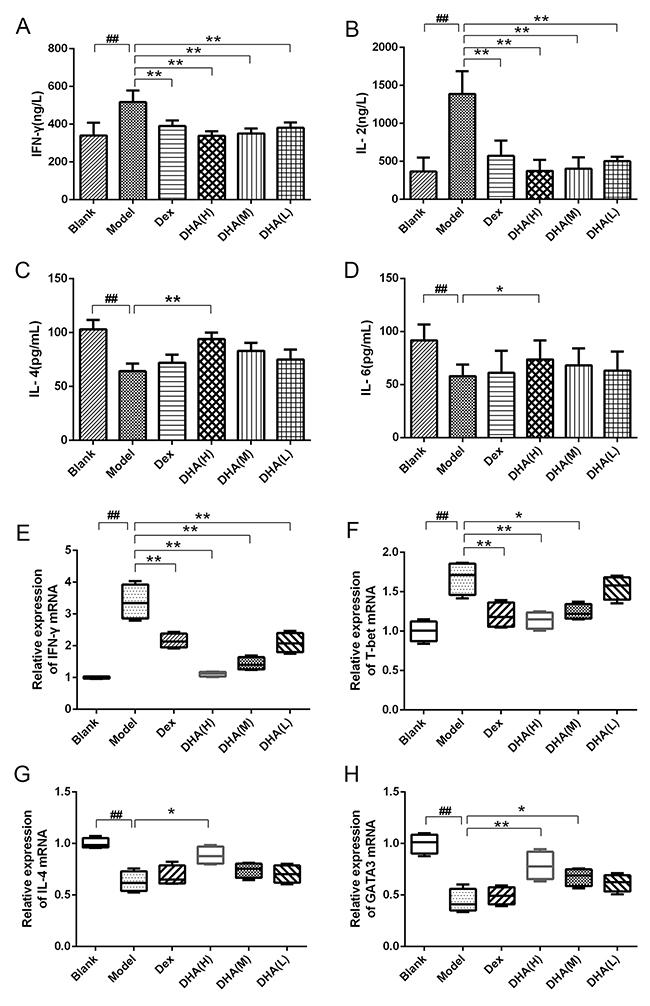 Effect of DHA on Th1/Th2 cytokine balance.