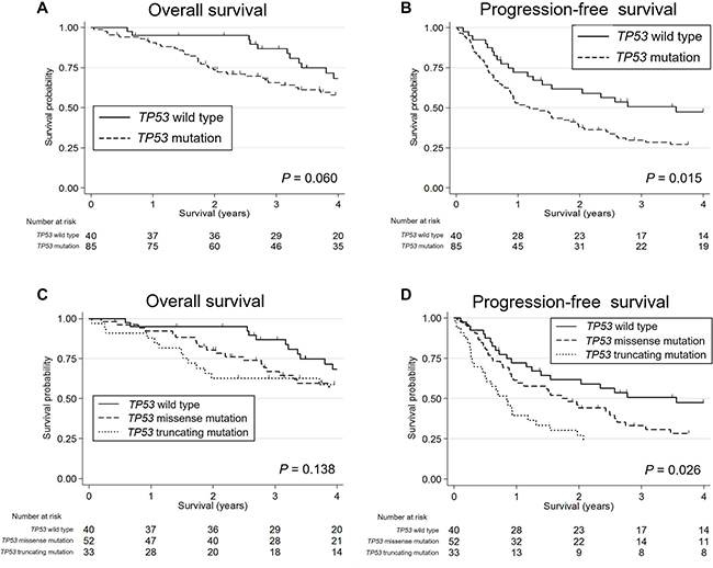 Kaplan-Meier survival curves of patients with salivary duct carcinoma stratified by their TP53 status.