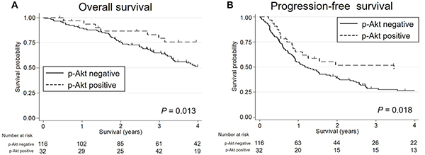 The Kaplan-Meier survival curves for patients with salivary duct carcinoma stratified by the p-Akt expression status.