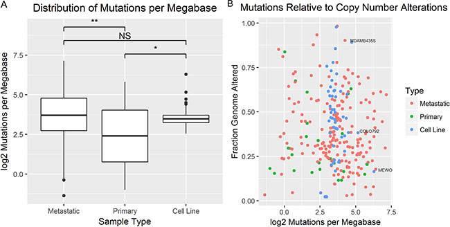 The mutational burden was compared between tumors and cell lines.