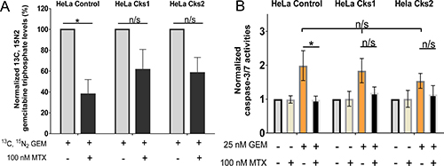 Increased gemcitabine incorporation into genomic DNA and enhanced apoptosis in high CKS-expressing cells under replication stress.
