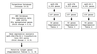 Flow chart of the strategy for analysis of