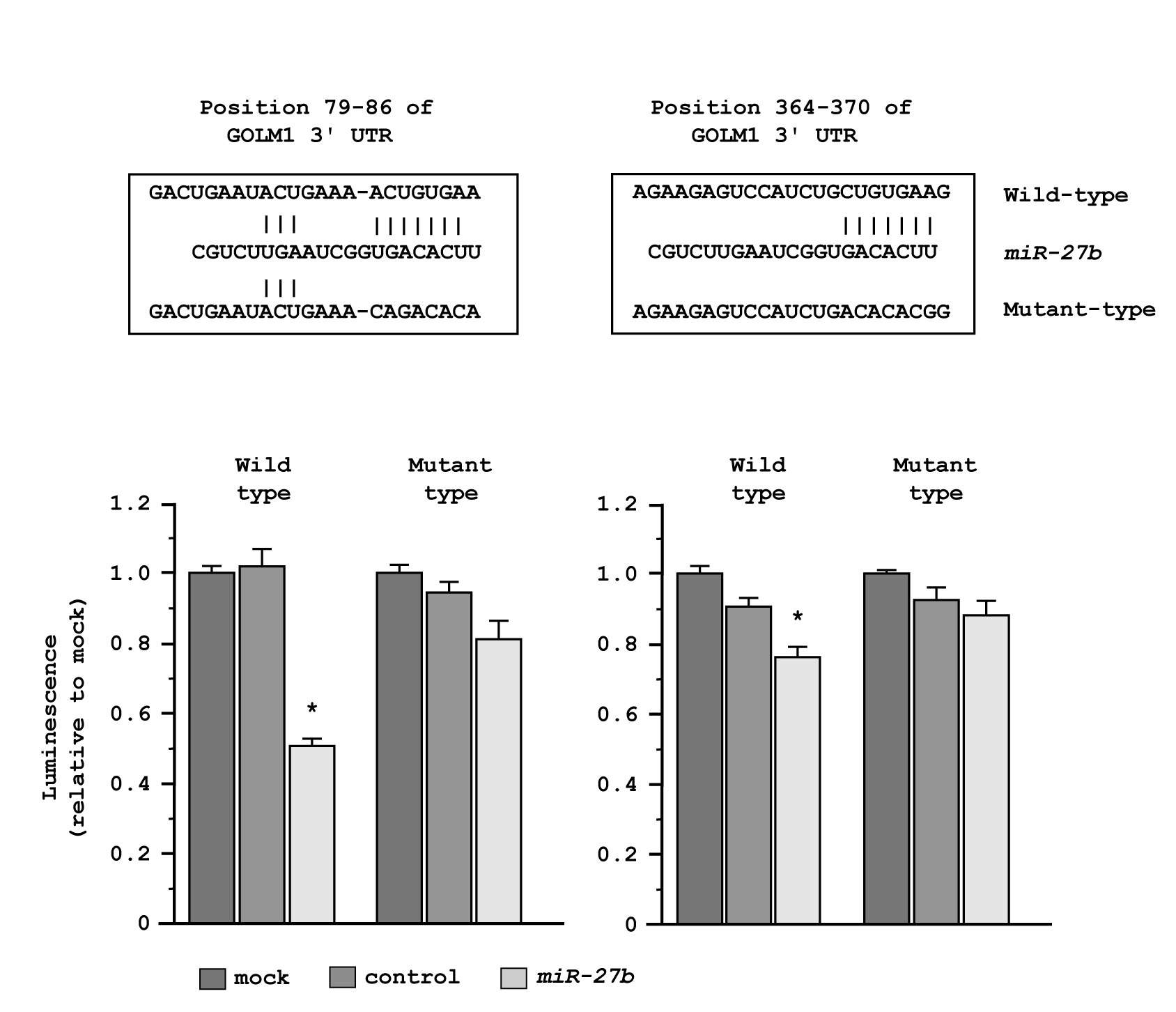 Regulation of GOLM1 expression by