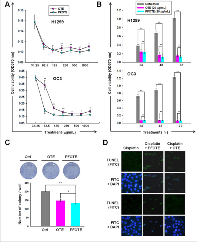 Anti-cancer effect of OTE and PFOTE on OC3 and H1299 cell lines.