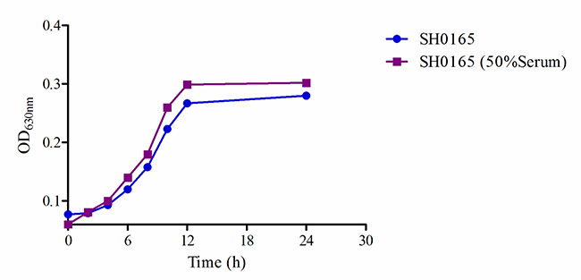 The growth-time curve of SH0165 in vitro and ex vivo.