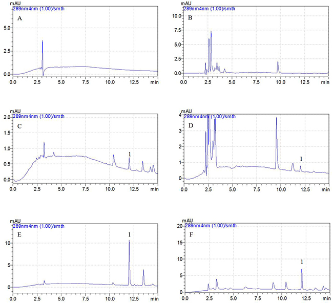 Representative HPLC chromatograms: A, blank plasma sample; B, blank BAL sample; C, plasma sample at the LLOQ of 0.01 μg/ml (5X concentration); D, BAL sample at the LLOQ of 0.05 μg/ml; E, plasma sample after i.m. administration of tildipirosin at the point of 15 min; F, BAL sample after i.m. administration of tildipirosin at the point of 1 h; 1, tildipirosin at the peak time of 12.2 min.