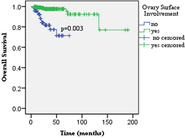 Ovarian surface involvement was identified as the only independent risk factor for patients' survival in the multivariate analysis (p = 0.003).