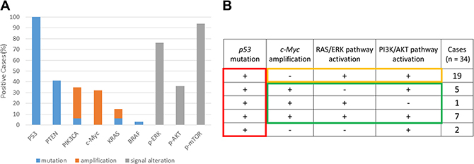 Mutation, amplification, and pathway activation status of tumor samples from patients with high-grade serous ovarian carcinoma (HGSOC).