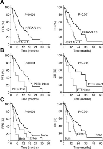 Survival outcomes according to molecular biomarkers in HER2+ gastric cancer.