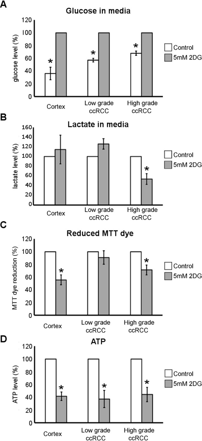 Metabolic effect of 2DG treatment in low- and high-grade ccRCC and normal cortex primary cultures.
