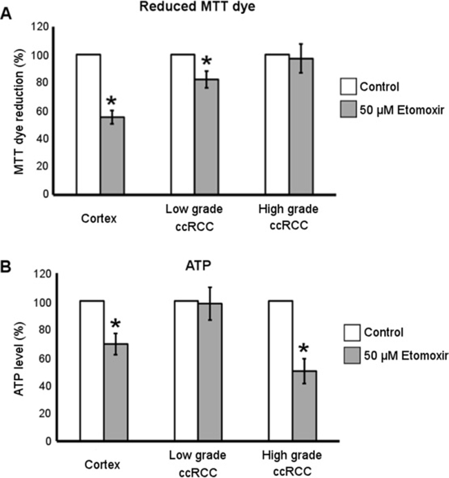 Metabolic effect of Etomoxir treatment in low- and high-grade ccRCC and normal cortex primary cultures.