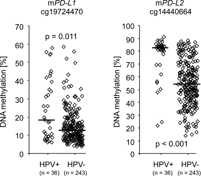 PD-L1/PD-L2 methylation and HPV-status.