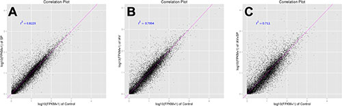 Correlation tests for groups of different treatments.