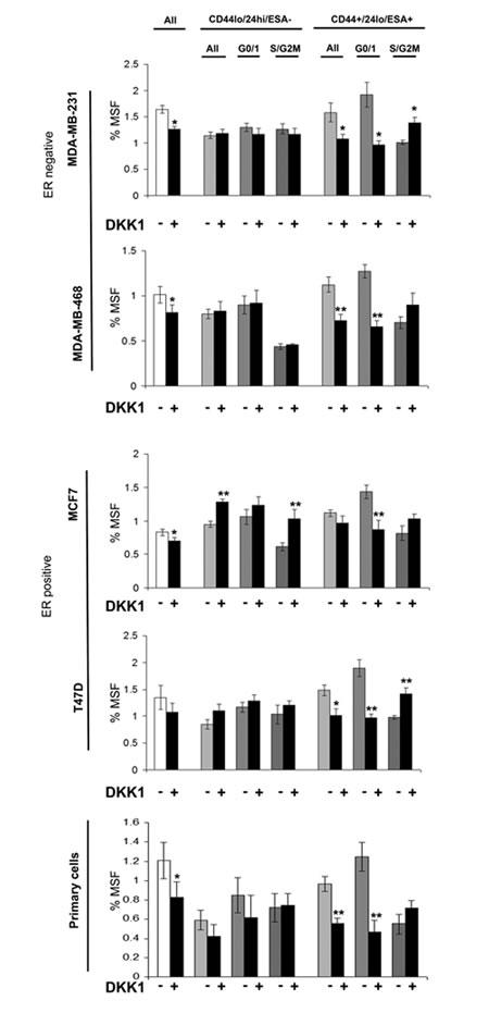 Wnt inhibitor DKK1 specifically inhibits G0/1 Stem-like cells.
