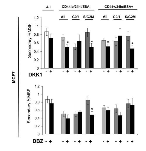 Stem cell signalling inhibitors decrease self renewal of MCF7 stem-like cells.