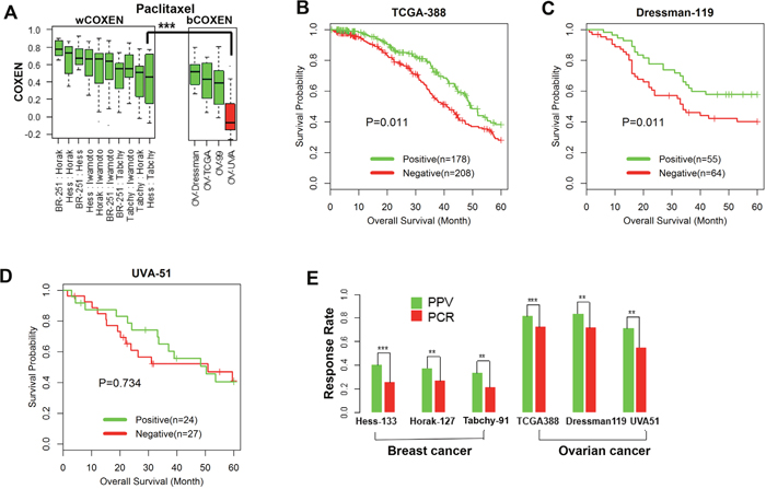 Cross-cancer type prediction of response to paclitaxel.
