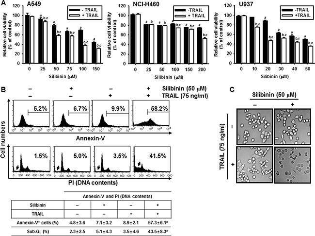 Effect of silibinin and/or TRAIL on cancer cell viability.