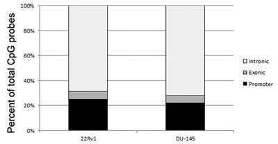 Bar graph showing the distribution of the location of CpG probes that were identified in the hypomethylated DNA fraction after treatment with 5-Aza 2'–deoxycitidine (DAC).