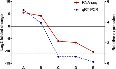 Validation of differentially expressed lncRNAs in silica particle exposed macrophages.