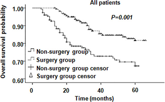 Overall survival of all patients.
