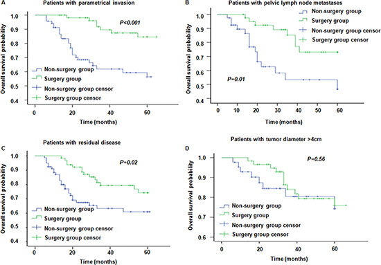 Overall survival in patients with different risk factors in surgery group and non-surgery group.