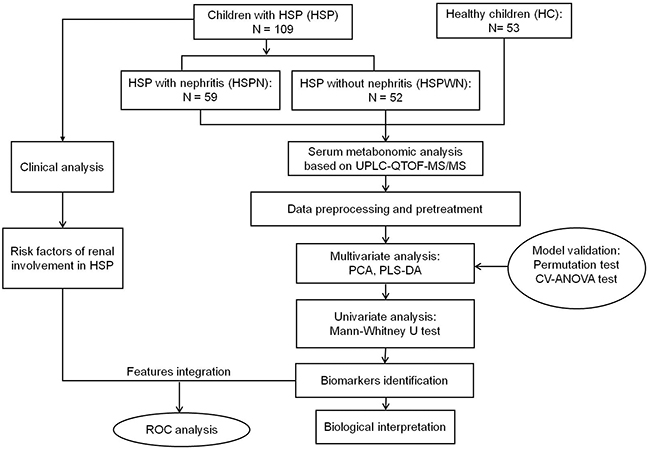 An overview of workflow utilized in serum metabonomics analysis of HSP.