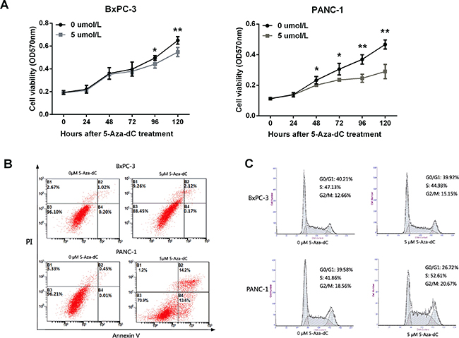 LITAF demethylation inhibits cell growth, and induces apoptosis and cell cycle arrest in pancreatic carcinoma cells.