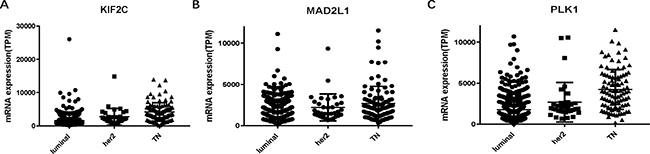 L KIF2C, MAD2L and PLK1 expressions among molecular subtypes of breast cancer.