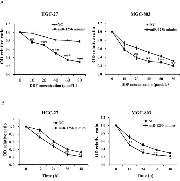 Overexpression of miR-125b contributed to the chemosensitivity of DDP in HGC-27 and MGC-803 cells.