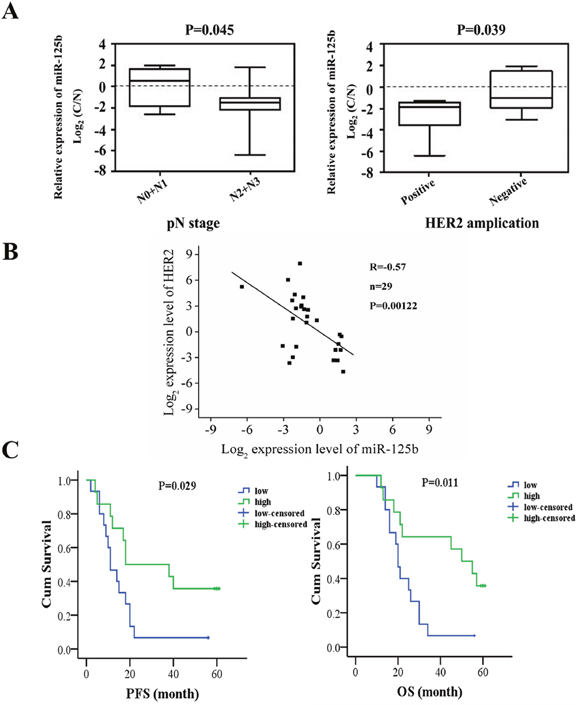 The correlation analysis between miR-125b expression and clinical manifestation and prognosis of gastric cancer patients.