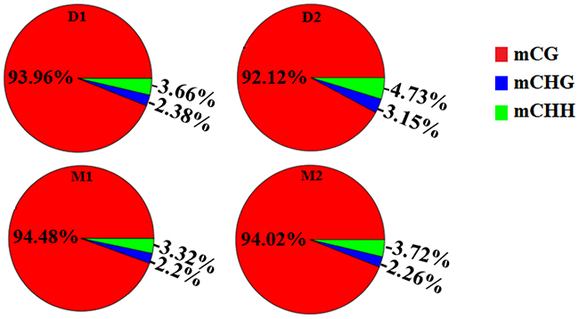 Proportion of different methyl-cytosine patterns in analyzed goat genome of lactation period and dry period mammary glands.
