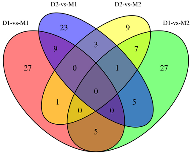 Venn diagram for DMR-related genes of two periods.