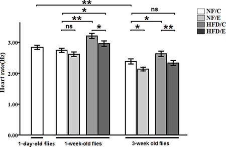 Effects of HFD and endurance training on heart rate at one-day old flies, one-week old flies, and five-week old flies.