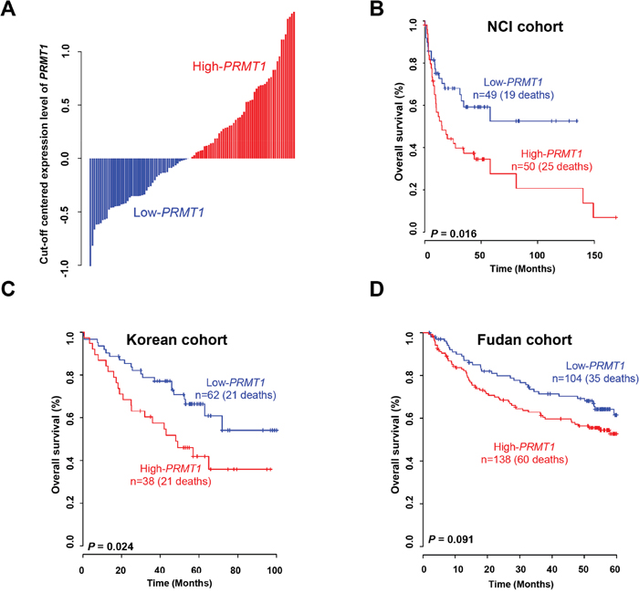 Expression of PRMT1 and prognosis of liver cancer.