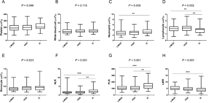 Box-plot diagrams were drawn according to the distribution of inflammatory markers in mucinous pancreatic cystic neoplasms stratified by pathology.