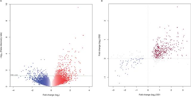 Gene expression profiles define distinct characteristics of pediatric SEPN.