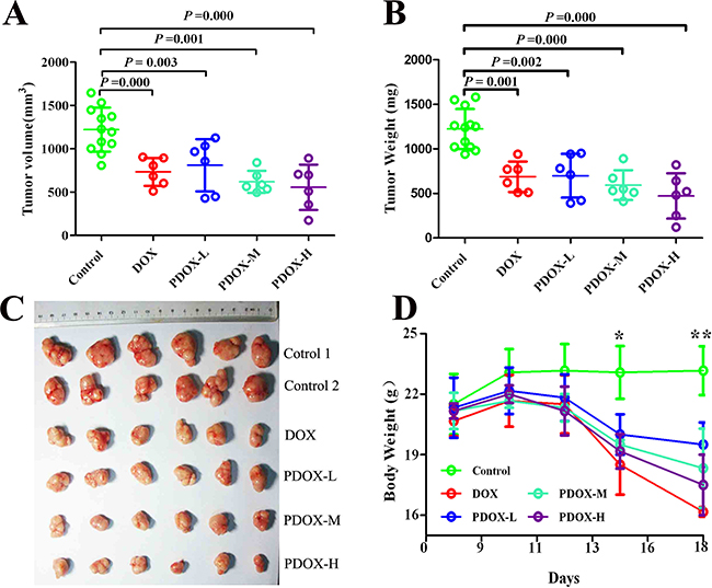 Effects of PDOX treatment on SC model of gastric cancer.