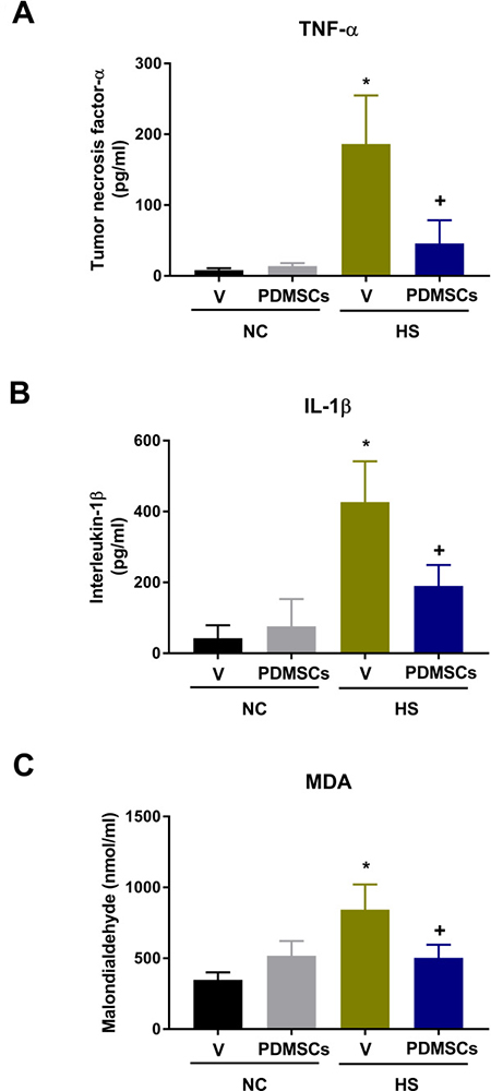 Analysis of the levels of (A) tumor necrosis factor-a (TNF-a), (B) interleukin-1b (IL-1b), and (C) malondialdehyde (MDA) following treatment with PDMSCs.