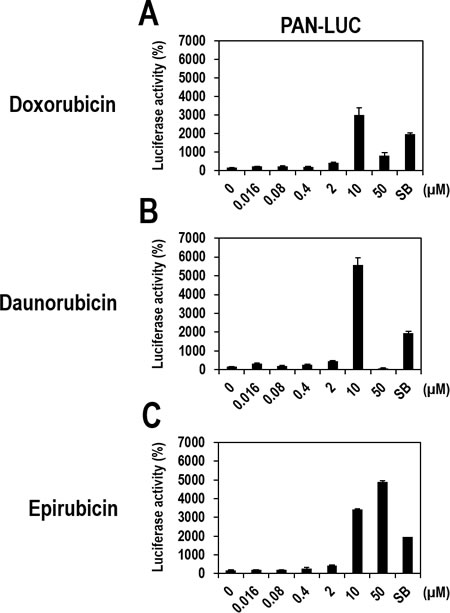 Dose-dependent activation of the PAN promoter by Doxorubicin, Daunorubicin, or Epirubicin in vero-rKSHV.219/PAN-LUC cells.