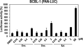 Effects of the three compounds on PAN promoter activities in human B-cell lymphoma BCBL1 cells naturally infected with KSHV.