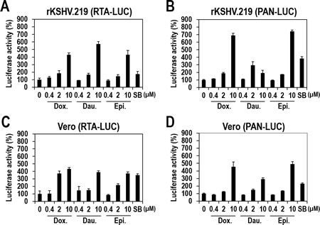 KSHV-independent activation of the RTA and PAN promoters by the three compounds (A and B) Vero-rKSHV.219 cells were transfected with plasmids expressing firefly luciferase under the control of the RTA (A) or PAN (B) promoters.