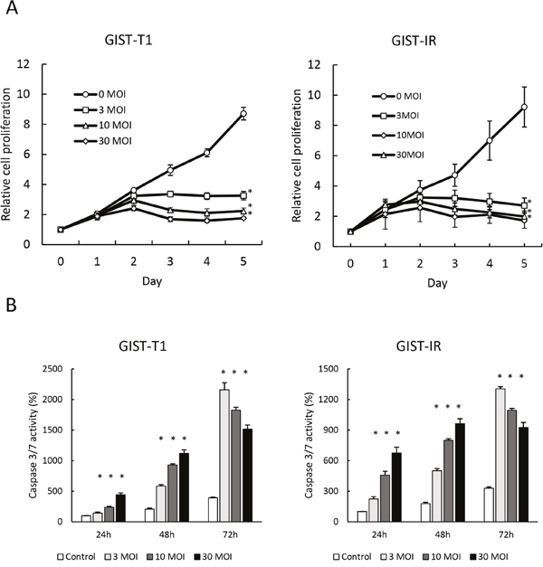 Growth inhibition and apoptosis induction by reovirus in GIST-T1 and GIST-IR cells in vitro.