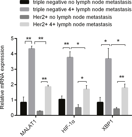 Differences in Expressions of MALAT1, HIF-1α and XBP1 in 2 Kinds of Breast Cancer without and with Metastatic Lymph Nodes (≥4) Detected by qRT-PCR.