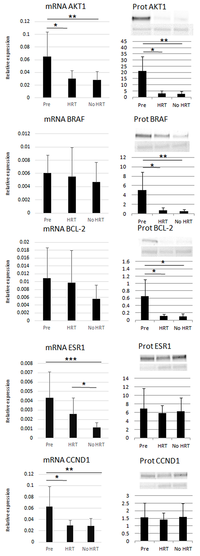 Relative mRNA expression and protein levels of the miR targets.