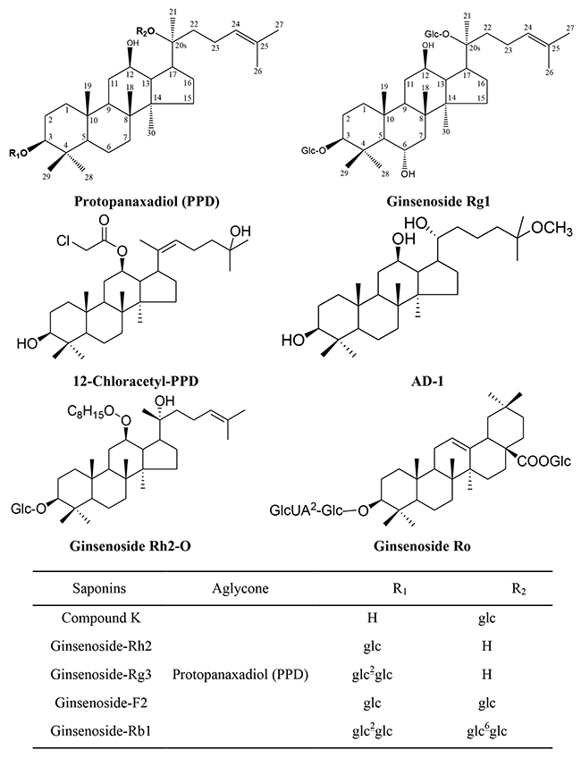 Chemical Structure of Ginsenosides Included in This Review.