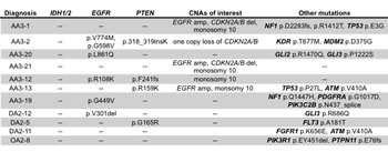 Table summarizing copy number alterations and mutations in